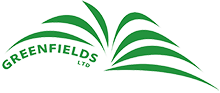 Greenfields Derivatives Pvt Ltd